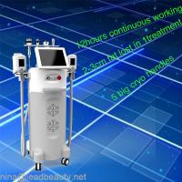 China Cryolipolysis freezing fat device with 2 Big Japan imported copper radiator on sale