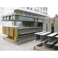 Customized Warehouse Steel Structure Fabricated For Mineral Plant Manufactures
