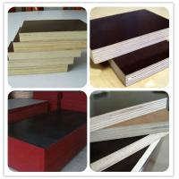 AA grade film faced plywood Manufactures