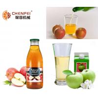 Quality Industrial Apple Juice Processing Line Energy Saving 2 T/H Capacity ISO9001 for sale