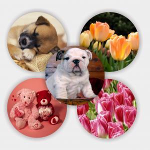 3d coaster Lenticular PET material 3d coaster Manufactures