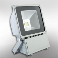 Epistar 35Mil led chip 100W outdoor led floodlight Manufactures