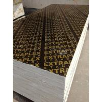 China ACEALL Cheap Finger Joint Core Film Faced Plywood Sheets Manufactures