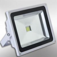 3 years warranty 30W LED flood light Manufactures