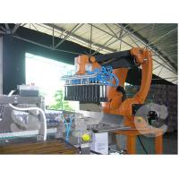 Full Auto Robot Carton Packing Machine Robotic Packaging Systems 220V / 380V Manufactures