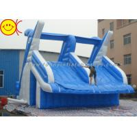 Giant Dolphin Style Inflatable Water Slide Double Stitching Workmanship Manufactures