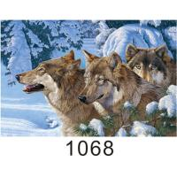 0.6mm Thickness 3D Lenticular Images , Advertising Poster 3D Wolf Picture Manufactures