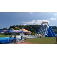 giant infltable water slide kids and adults Manufactures
