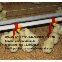 Poultry&Livestock Farm Silver Steel Automatic Broiler Deep Litter System with Feed Pan&Drinking System Manufactures