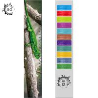 High Definition Motion 3D Lenticular Ruler Animal Design For Students Manufactures