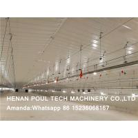 Chicken Farming Raising Chicken Automatic Broiler Floor System & Broiler Deep Litter System in Chicken House Manufactures