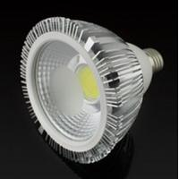 15W/18W PAR30/38 COB LED par30 light Manufactures