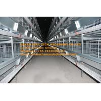 Buy cheap Poultry Bird Farm Hot Galvanized Silver  H Frame Automatic Laying Egg Chicken Cage Coop Equipment with 84-224 Birds from wholesalers