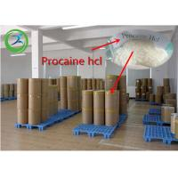 Procaine HCl Local Anesthetic Agents White Powder CAS 51-05-8 99% Assay Manufactures