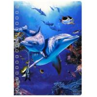45 Sheets 3D PET Cover Lenticular Spiral A5 Notebook With UV Printing Manufactures