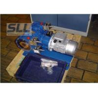 Double Heads Hose Squeeze Pump For Chemical / Mining / Food Industry Manufactures
