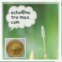 Kava Extract 30% Kavalactones Manufactures