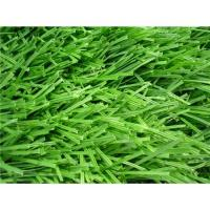 Soccer artificial turf/football grass Manufactures