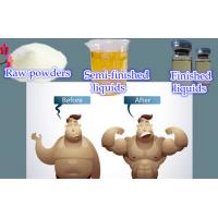 Injectable Anabolic Steroids Muscle Building Propionat 100 Testosterone Propionate 100mg/Ml Manufactures