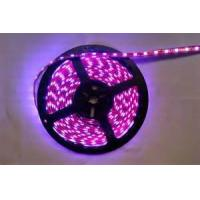 140° 1000 mcd waterproof RGB led strip lights with remote control , long lifespan Manufactures