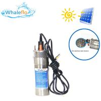 China Whaleflo 12LPM 3M Cable 24 Volts Stainless Steel Borehole Submersible Solar Water Pump for Irrigation on sale