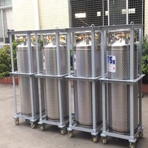 175L Cryogenic Liquid xygen/Nitrogen/Argon Cryogenic Cylinder Dewar Bottle TL175L Manufactures