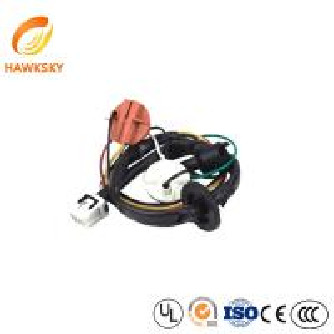 China auto lighting kits /car outdoor lighting kits/automobile lighting wire harness on sale