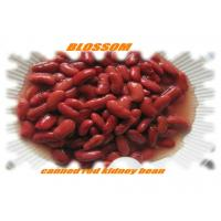 Canned Red Kidney Bean Manufactures