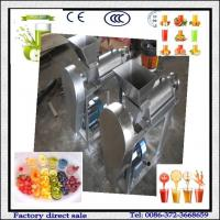 Fruit And Vegetable Juice Machine For Apple Juice Tomato Juice Carrot Juice Manufactures