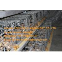 Poultry Farm Hot Galvanized Cage A Type Pullet Cage & Battery Small Chick Cage Coop for Brooding Room with 162 Birds Manufactures