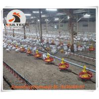 Quality Poultry & Livestock Farm Automatic Broiler Chicken Bird Ground Rearing System & for sale