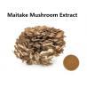 Improving Immunity Maitake Mushroom Extract , 30% Polysaccharides Maitake Mushroom Powder Manufactures
