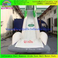 Enjoy Giant Inflatable Water Slide For Adult, Inflatable Toy, Adults Inflatable Slide Manufactures
