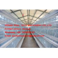 Hot Galvanized Cage Chicken Farm A Type Layer Chicken Cage with 120 Birds with Automatic  Drinker & Feeding System Manufactures