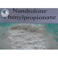 Nandrolone 17-propionate male muscle CAS No 434-22-0 White crystalline powder Manufactures