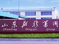 Shandong Dingxin Electronic Glass Group Co., Ltd.