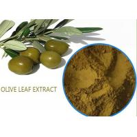 Organic Olive Leaf Extract For High Blood Pressure ,  Pure Olive Leaf Extract Super Strength Manufactures