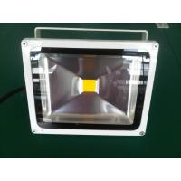 Bridgelux chip and Meanwell driver 100W led floodlight Manufactures