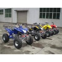 ATV 200CC 250CC WATER-COOLING,RAPTOR STYLE Manufactures