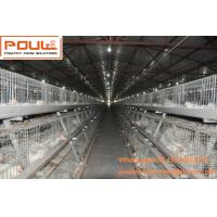 Quality Poultry Equipment Steel Sheet Silver Automatic Broiler Chicken Cage  System with Feeding&Drinking System for sale