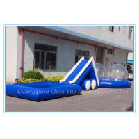 Large Inflatable Water Slide with Pool for Commercial Use (CY-M2139) Manufactures