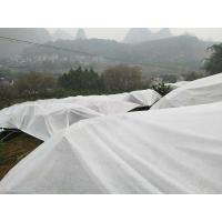 100% PP Nonwoven White Extra Width Non Woven Landscape Fabric Biodegradable For Farm Manufactures