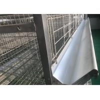 Professional Chicken Poultry Farm Water System  Chicken Watering Line