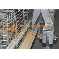 Brooding Room Hot Galvanized Cage Automatic Baby Chicken Cage for Chicken Shed with Feeding&Drinking System Manufactures