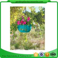 Colorful ABS Plastic Hanging Pots Includes Hanging Chain With Hook Manufactures