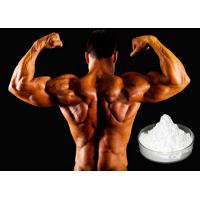 Sustanon 200mg/ml Muscle Gain Steroids without Side Effects Oil based Injectable Testosterone Blend Manufactures