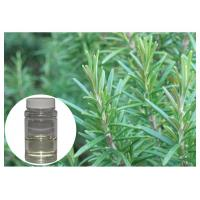 Oxidatant Resistance Plant Extract Powder Colorless Rosemary Essential Oil For Skin Manufactures