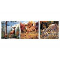 Custom 16x16 Inches 3d Lenticular Photo Flowers & Animals Mounted Wall Art Print Manufactures