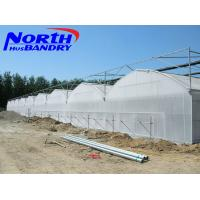agricultural poly film greenhouse for sale in China Manufactures