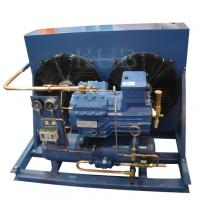 V2084Y sturdy and compact design Italy frascold condensing unit for cold room Manufactures